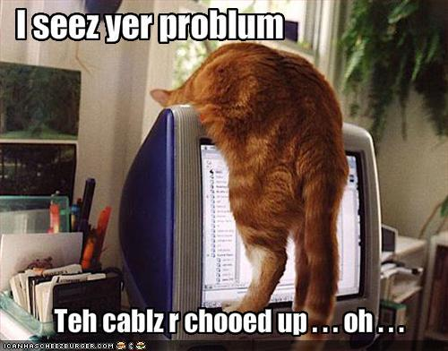 funny-pictures-cat-is-troubleshooting-your-troubles